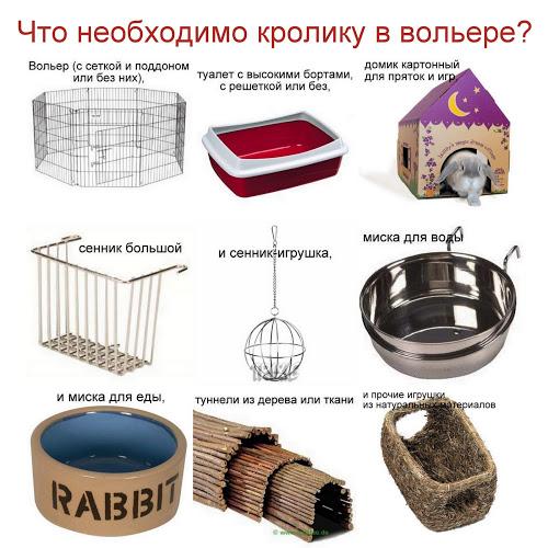 Как обустроить вольер кролику?